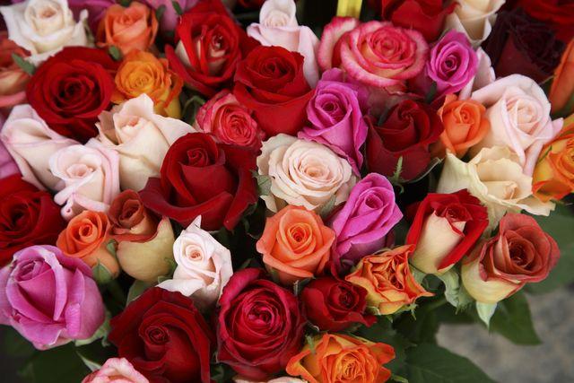 roses for sale at flower market