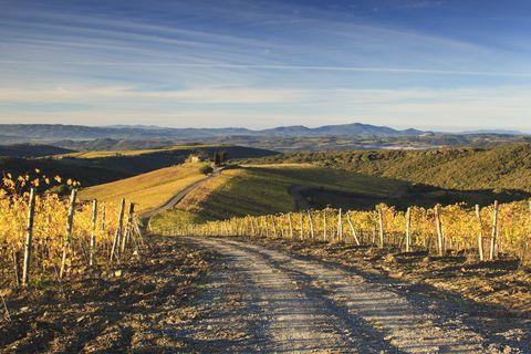 Sky, Road, Natural landscape, Hill, Yellow, Tree, Mountain, Grassland, Landscape, Rural area,