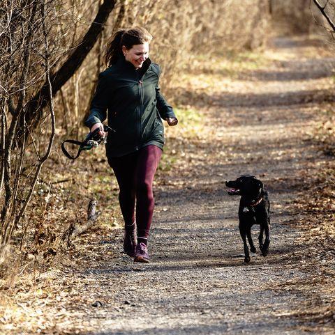 Rosie Trail Dog