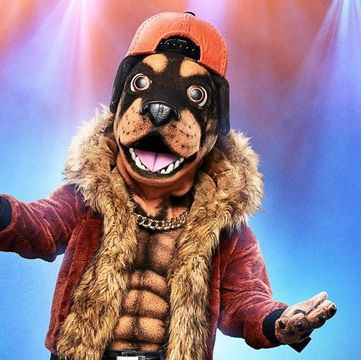 Fun, Snout, Smile, Animated cartoon, Fur, Fictional character, Canidae, Performance, Illustration,