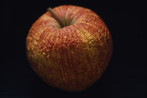 rotting apple