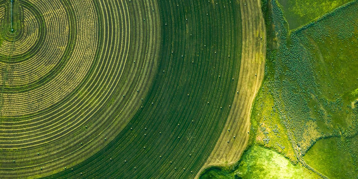 These Breathtaking Aerial Photos Capture U.S. Farmland Patterns Like You've Never Seen Before