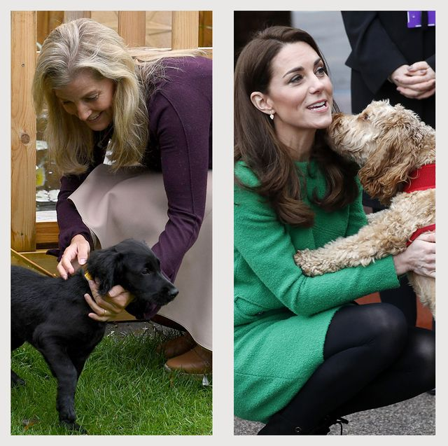 royal family with dogs