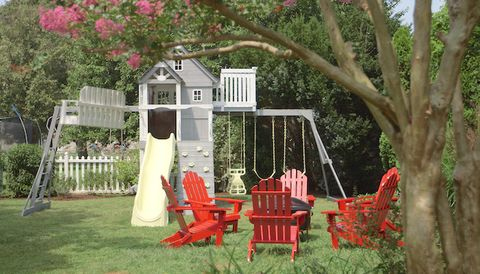 Pets Backyard Paint