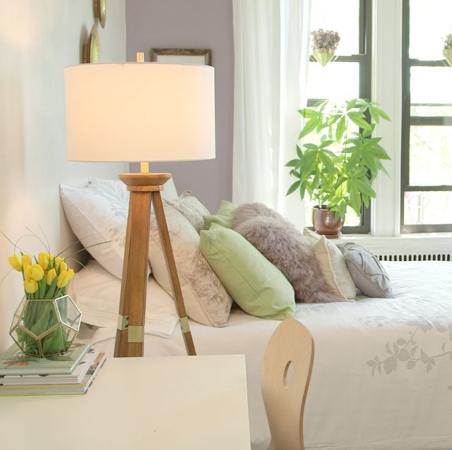Best Pet-Friendly Decorations for Apartments - How to ...