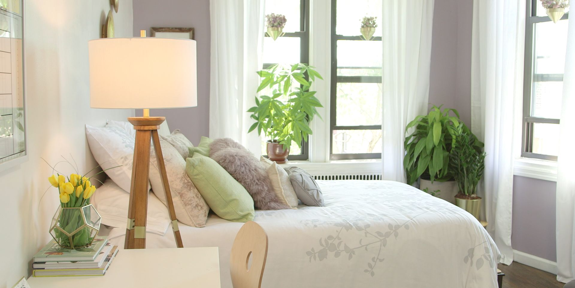 6 Pet-Friendly Decorations for a Small Apartment