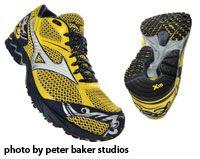Training Shoe: Mizuno Wave Ronin 2