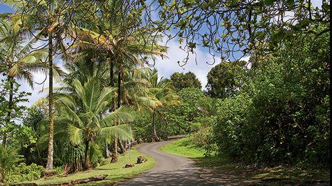 Route 360 Maui, HI