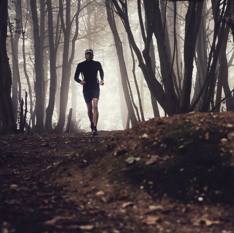 Easy runs put a greater load on your shins, says study