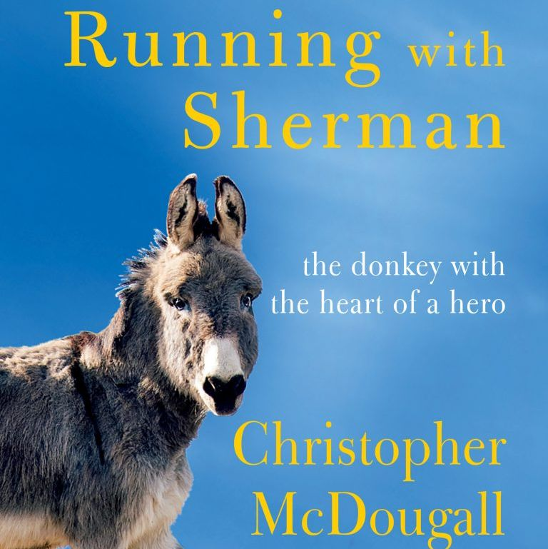 Chris McDougall's written a new book – about a donkey