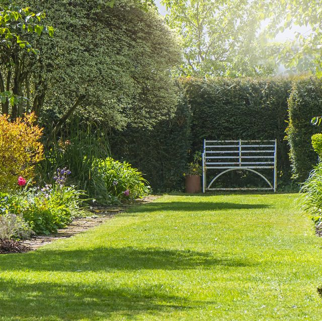 the top 15 towns and cities for homes with big gardens in the uk