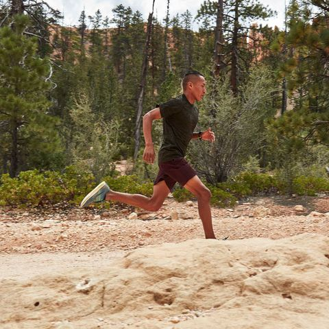 Sand, Recreation, Tree, Fun, Soil, Running, Trail, Vacation, Landscape, Forest,
