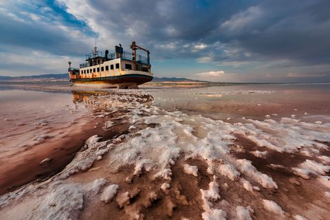 Environmental Photographer of the Year 2018