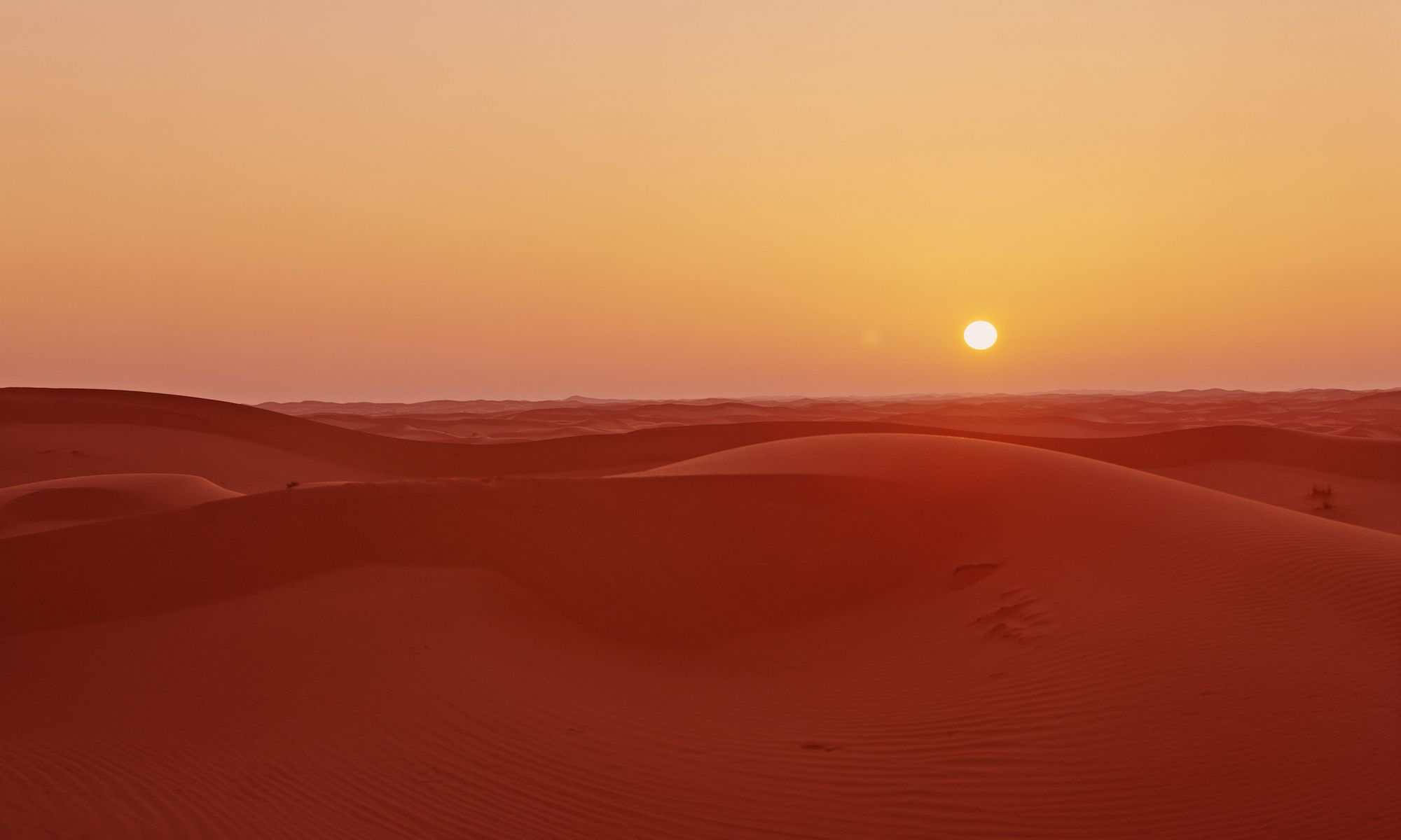 Saharan Twilight