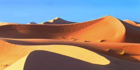 Sahara Sculptures