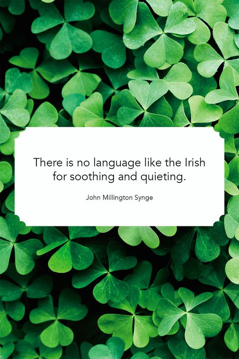 Saint Patricks Day Quotes Soothing language