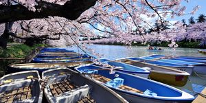 April holidays: Japan