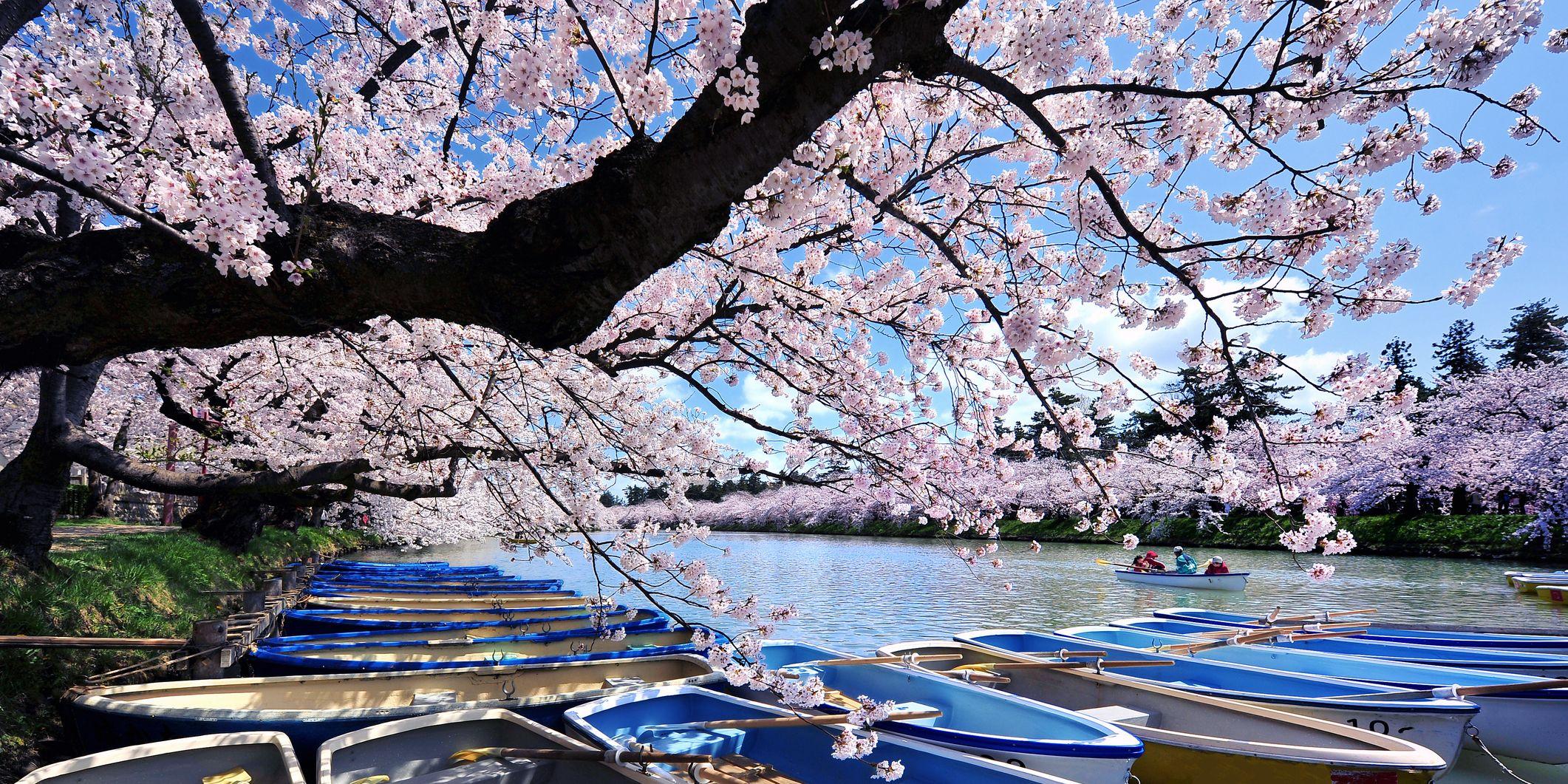 April holidays: Japan