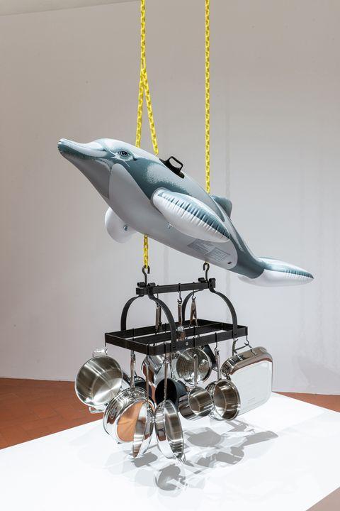 ella bialowska okno studio jeff koons dolphin