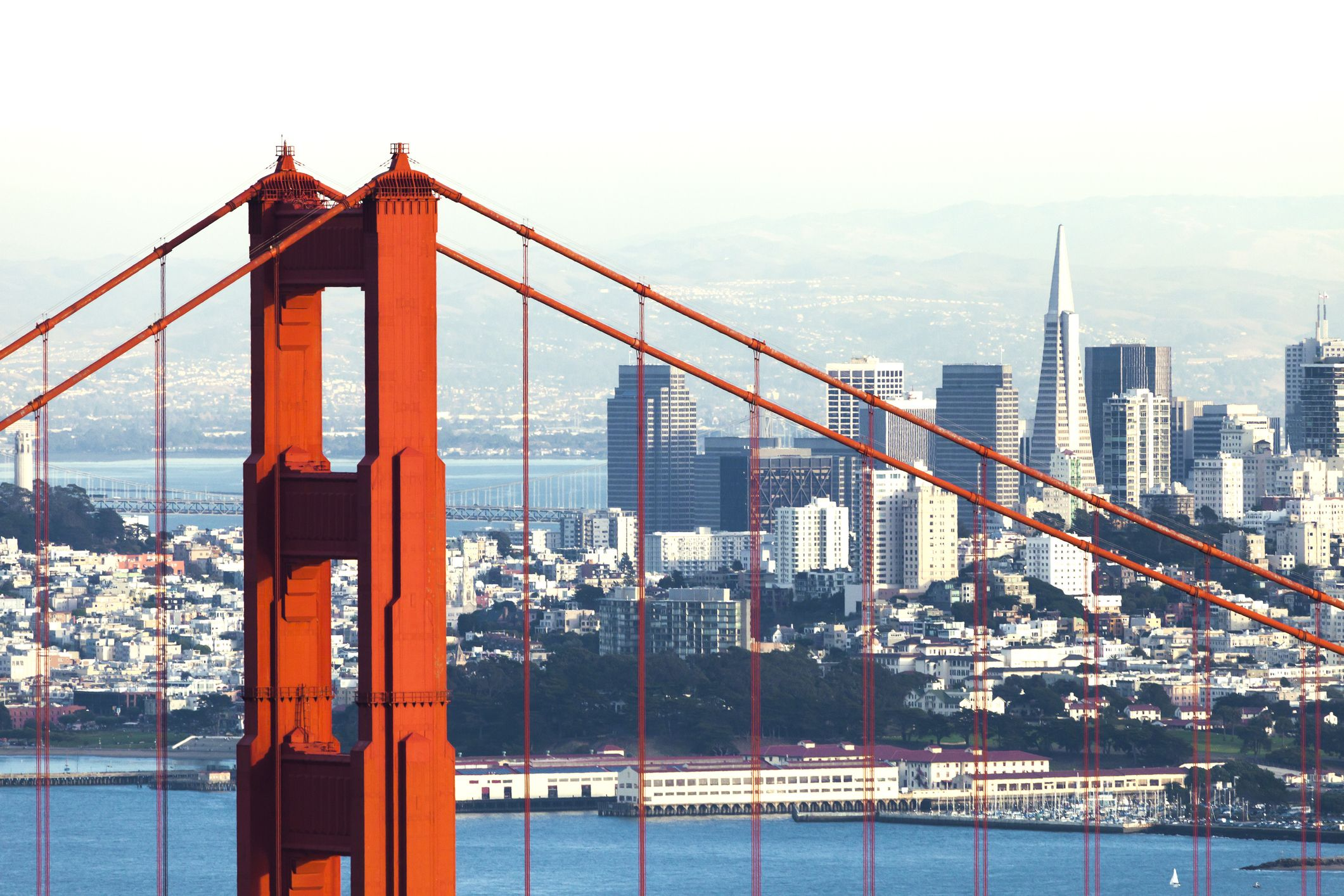 San Francisco Once Broke My Heart. Here's How We Got Back Together.
