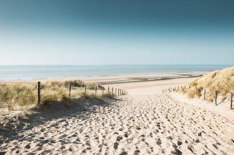 Sandy dunes on the coast of North sea