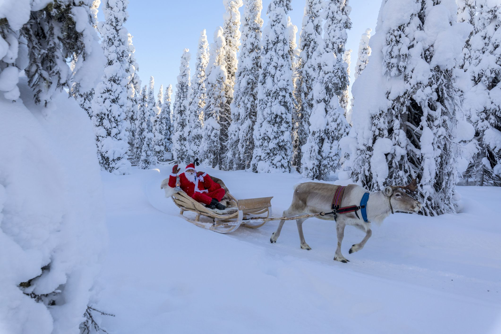The best holidays to Lapland for a Christmas you'll never forget
