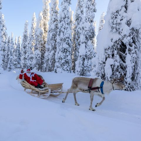 Lapland Christmas - Best winter holidays to Finland and Sweden