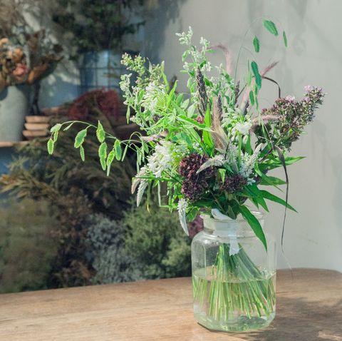Flower, Green, Plant, Flowerpot, Mason jar, Lavender, Houseplant, Vase, Bouquet, Botany,