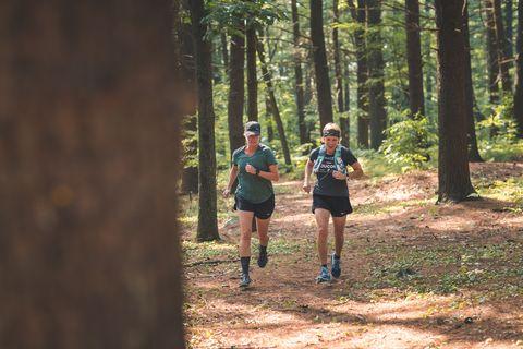 Trail, Outdoor recreation, Running, Recreation, Tree, Natural landscape, Forest, Natural environment, Wilderness, Ultramarathon,