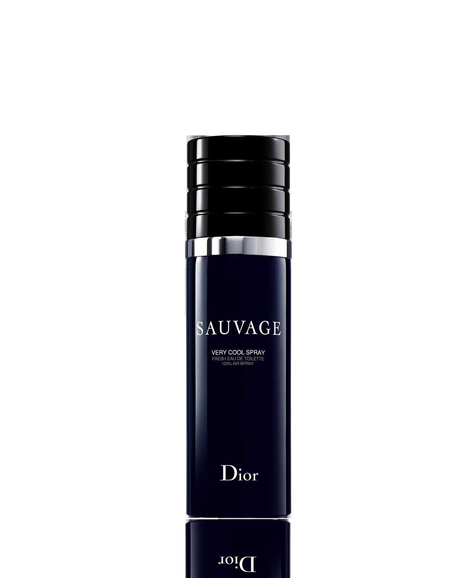 7dc15b1b7 Sauvage very cool spray de dior uno de los mejores perfumes de hombre png  1600x1950 Toilette
