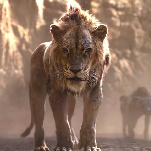 The Lion Kings Scar How He Got His Scar
