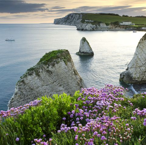 scenic coastal view at sunset, isle of wight, south east england, england, uk