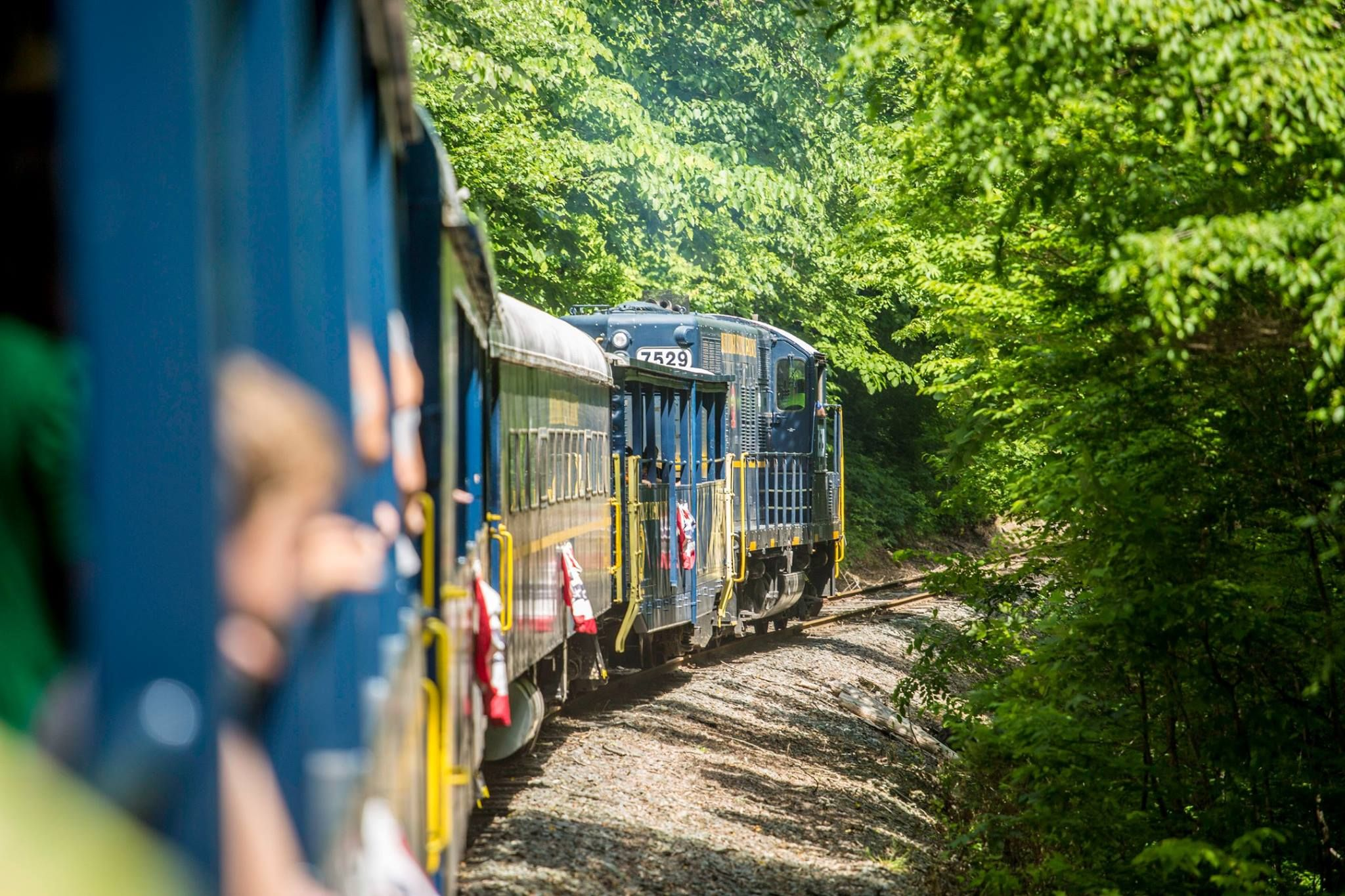 scenic train rides for kids - blue ridge scenic railway