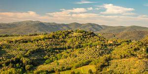 Panorama con vista di Castagneto Carducci