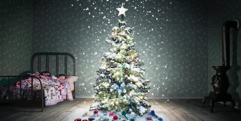 Christmas tree, Christmas decoration, Tree, Christmas, Christmas lights, Christmas ornament, Light, Christmas eve, Lighting, Room,
