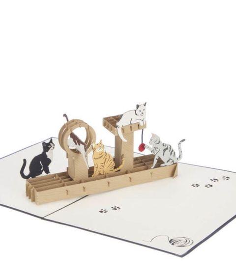 3d kattenkaart