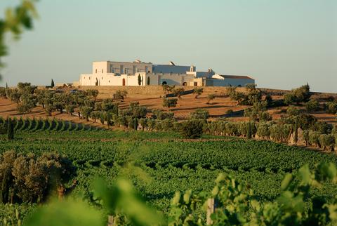 #WineResort, tappa tra i vini pugliesi più esclusivi