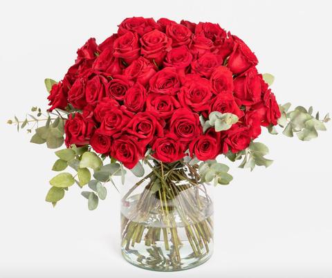 Flower, Rose, Bouquet, Flowering plant, Garden roses, Red, Cut flowers, Plant, Rose family, Floribunda,