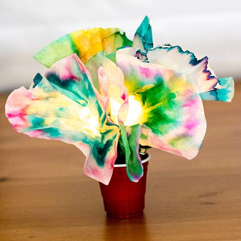 science experiments for kids   chromatography flowers