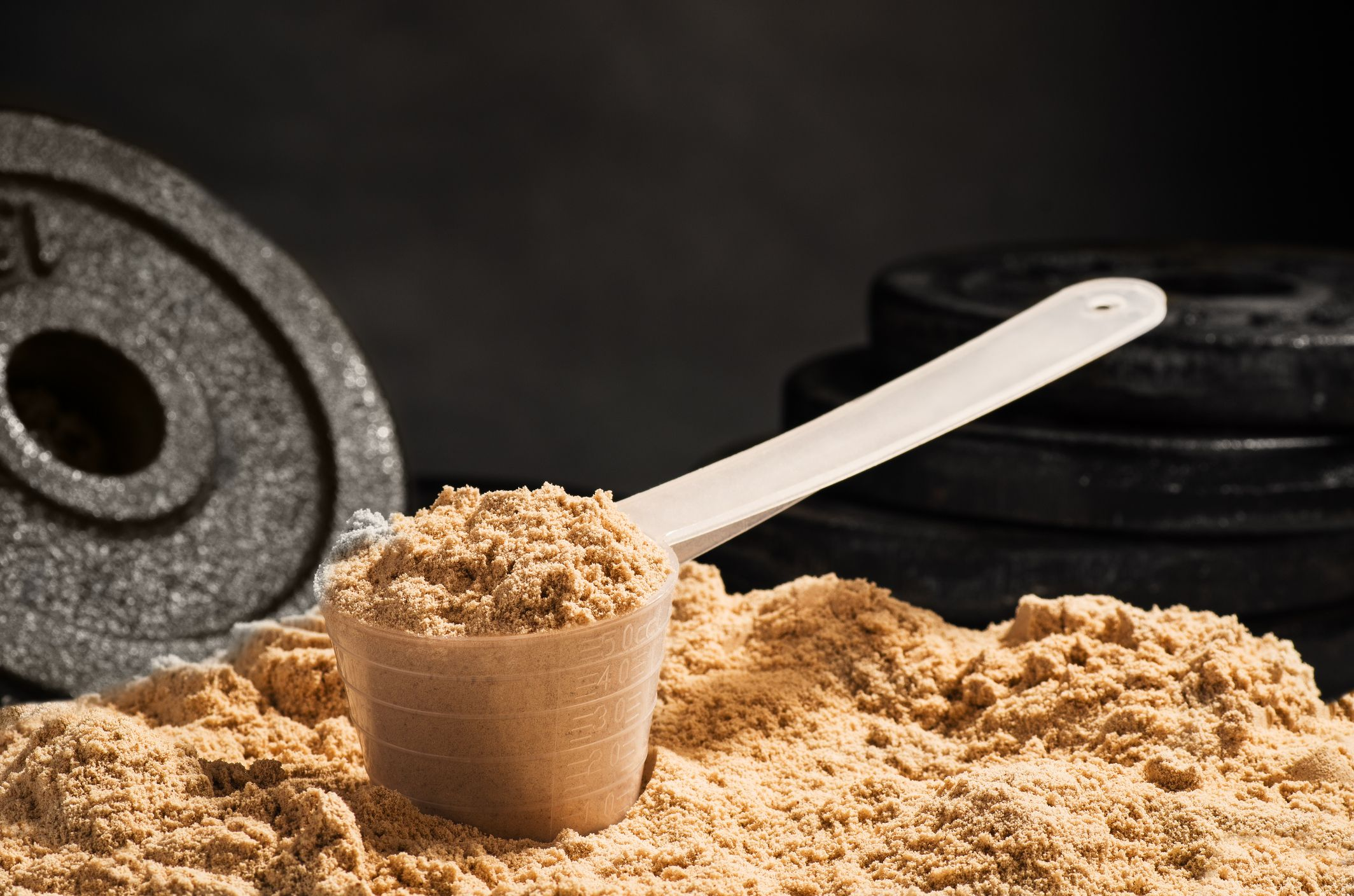 11 Whey Protein Powders to Add More Muscle