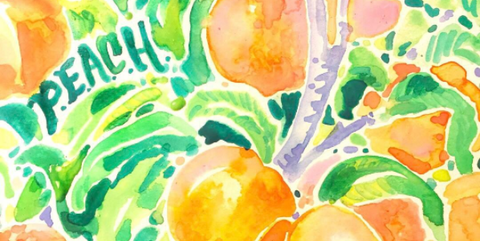 Lilly Pulitzer Peach Print