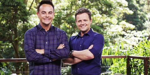 Why filming for I'm A Celebrity... Get Me Out Of Here! has been temporarily put on hold