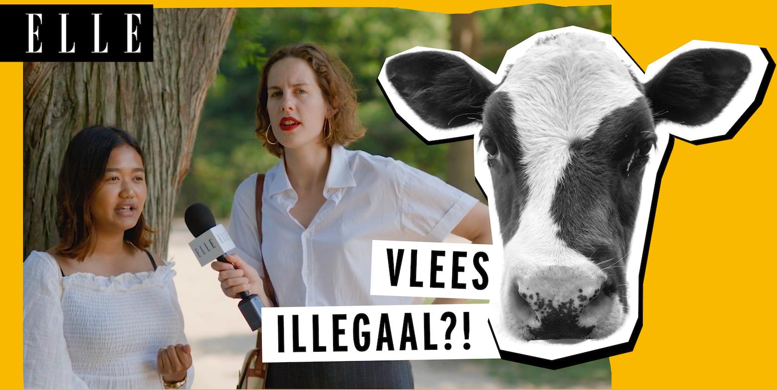 Is Nederland klaar voor een wereld zonder vlees?