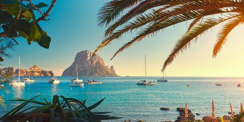 Tropics, Palm tree, Tree, Sky, Vacation, Sea, Arecales, Tourism, Ocean, Azure,