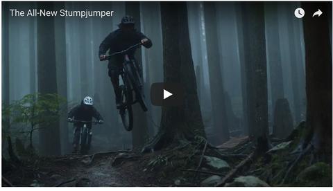 Bicycle, Mountain bike, Downhill mountain biking, Vehicle, Freeride, Cycle sport, Cycling, Mountain biking, Sports equipment, Tree,