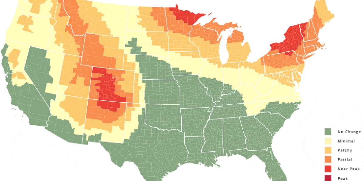 This Fall Foliage Map Predicts When Leaves Will Change Color