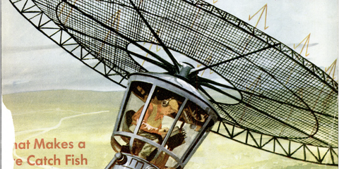 Antenna, Vehicle,