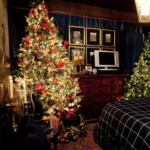 Room, Christmas decoration, Christmas tree, Christmas, Home, Property, Interior design, Tree, Lighting, Decoration,