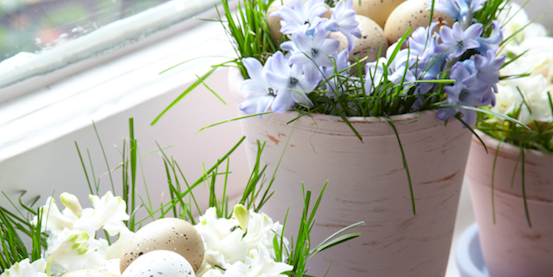 How to make your own Easter egg pots