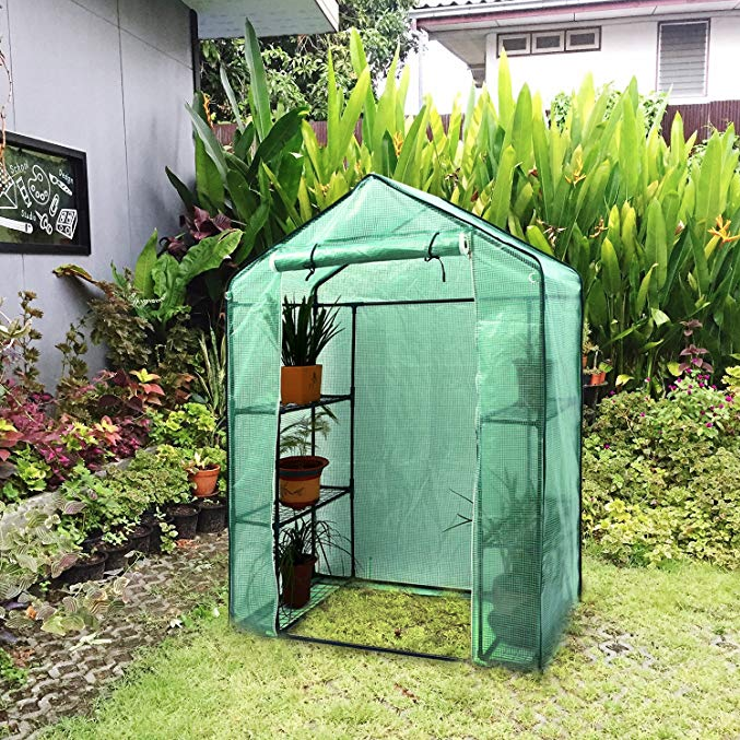Got a Green Thumb? You Need to Buy This $50 Greenhouse From Amazon